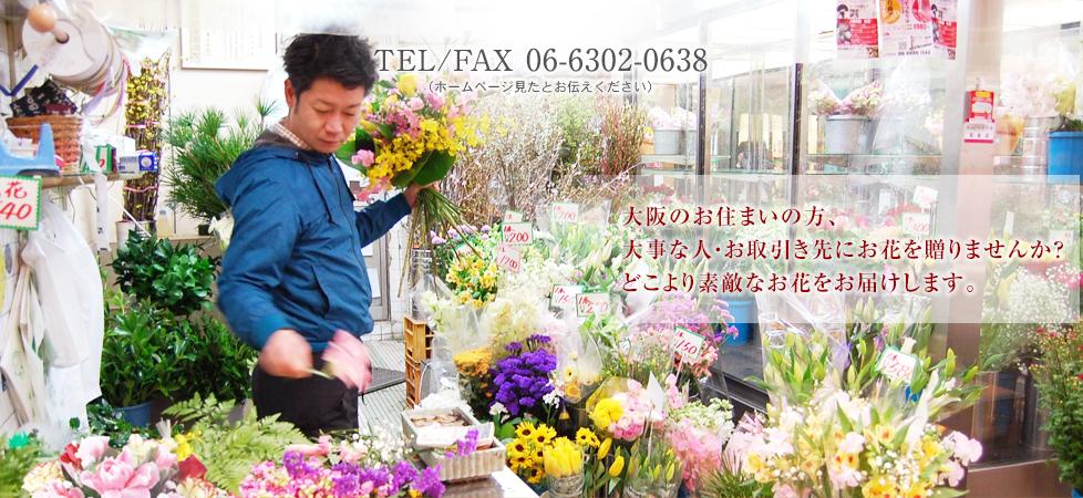 大阪のお住まいの方、大事な人・お取引き先にお花を贈りませんか?どこより素敵なお花をお届けします。TEL/FAX 06-6302-0638